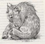 L'ours Bandar