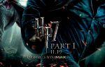 Potter 7